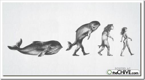 cosasdivertidas evolución (2)