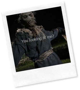 Zombie Scarecrow[13]