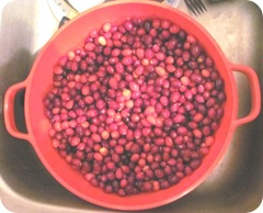 Jellied sauce starting with cranberries