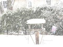 1 snowstorm2. 12.26.2010