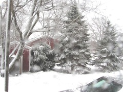 2010 snowstorm2