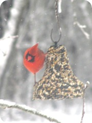 2010 snowstorm11