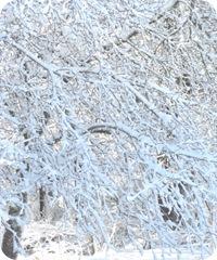 1.27.11 snowstorm around circle1