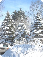 1.27.11 snowstorm sideyard2