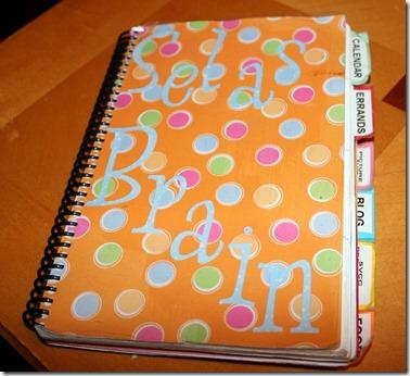 2011-01-04 Brain Book