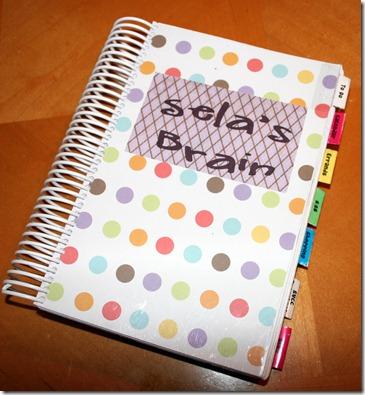 2011-01-10 Brain Book