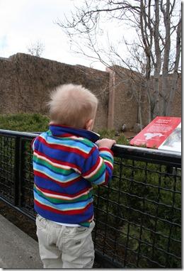 2011-03-15 Zoo (3)