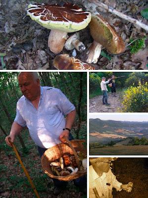 Porcini hunting in Piobbico, Le Marche Italy, La Tavola Marche