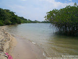 nomad4ever_java_baluran_CIMG5114.jpg