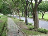 nomad4ever_malaysia_langkawi_IMG_1125.jpg