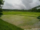 nomad4ever_laos_vang_vien_CIMG0608.jpg