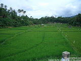 nomad4ever_indonesia_sulawesi_manado_bunaken_CIMG2471.jpg
