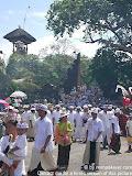 nomad4ever_indonesia_bali_ceremony_CIMG2548.jpg