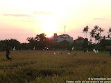 nomad4ever_indonesia_bali_landscape_CIMG1729.jpg