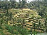 nomad4ever_indonesia_bali_landscape_CIMG1853.jpg