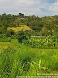 nomad4ever_indonesia_bali_landscape_CIMG1989.jpg