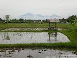 nomad4ever_indonesia_bali_landscape_CIMG2101.jpg