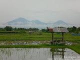 nomad4ever_indonesia_bali_landscape_CIMG2104.jpg