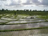 nomad4ever_indonesia_bali_landscape_CIMG2373.jpg