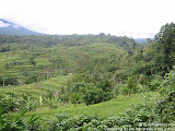 nomad4ever_indonesia_bali_landscape_IMG_2014.jpg