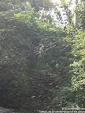 nomad4ever_indonesia_bali_landscape_CIMG2363.jpg