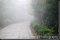 Mist or Rain - Zhangjiajie, Hunan, China