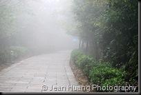 Mist or Rain - Zhangjiajie, Hunan, China