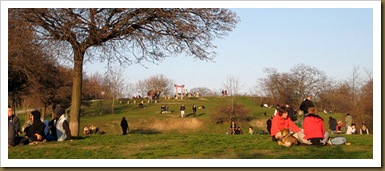 the park and people