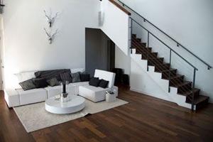 sofas-decoracion-interior-living-blanco-y-negro.