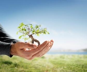 materiales-sostenibles