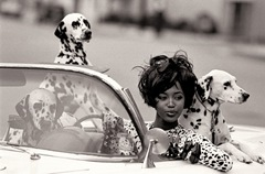 naomi campbell puppies