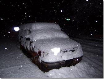 snow etc 013