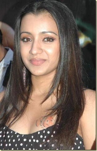 03 trisha hot kollywood actress piictures221109
