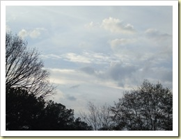 looking at sky on friday 12-4-09 004