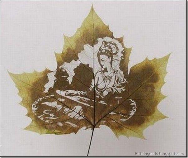 Desenho em folhas secas (13)