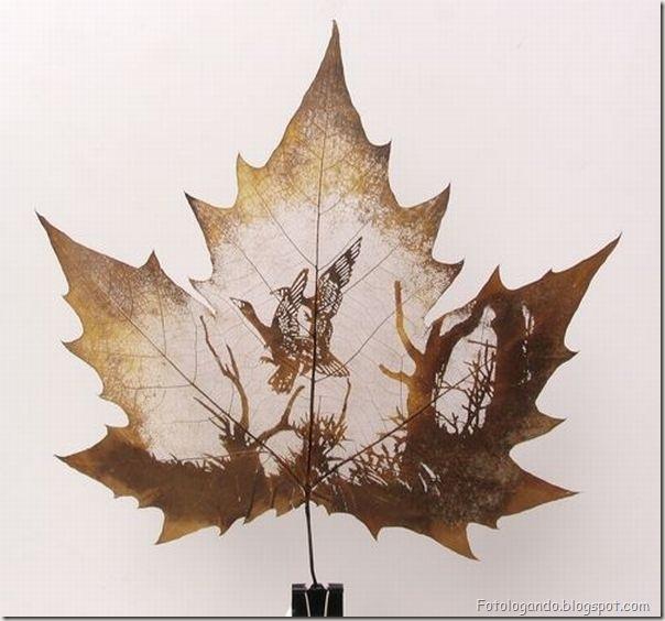Desenho em folhas secas (4)