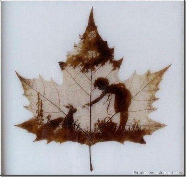 Desenho em folhas secas (2)