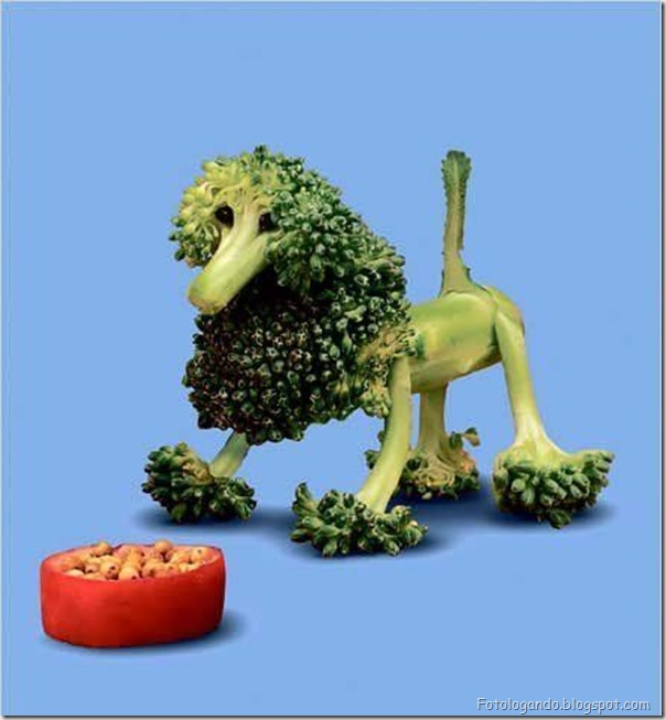 Diversão com frutas, legumes, ovos e outras coisas (71)