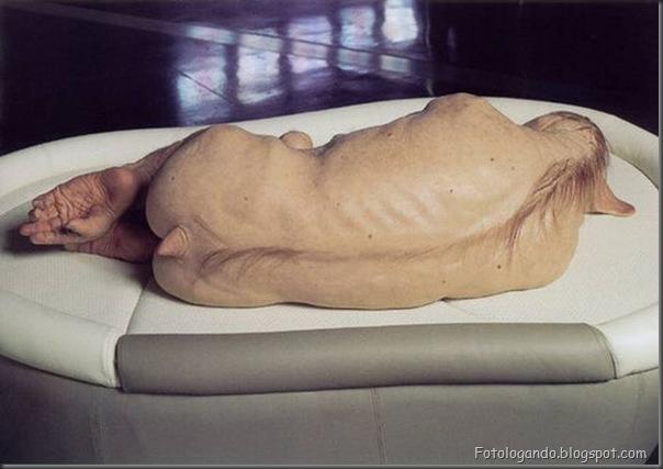 A arte controversa nas esculturas de Patricia Piccinini (29)
