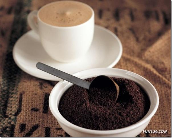 Fotos para amantes do café (8)