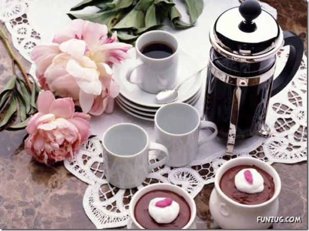 Fotos para amantes do café (11)
