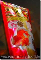 Fish Food  ~