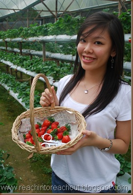 Strawberries !!