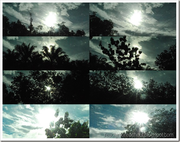 Roadside sun picture5