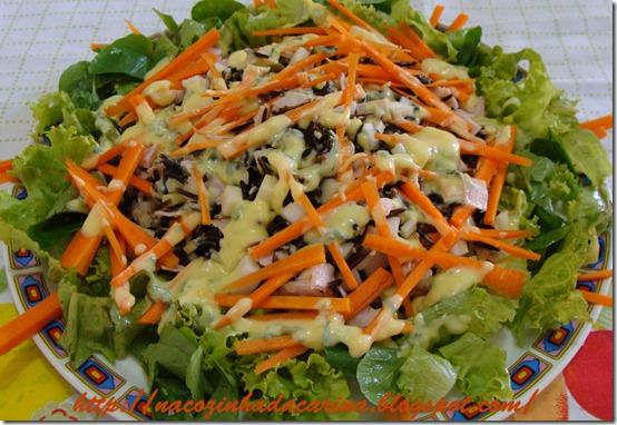 Salada-de-Arroz-Integral-com-Peito-de-Peru-01