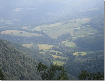 Cerro Burro2