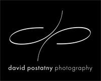 logo_DP_forDVD
