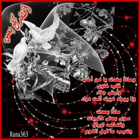 user39471_pic134_1225127695
