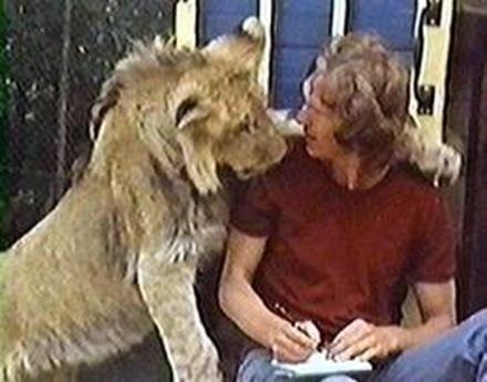leon, christian, convivencia animal