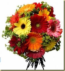 -flores 2